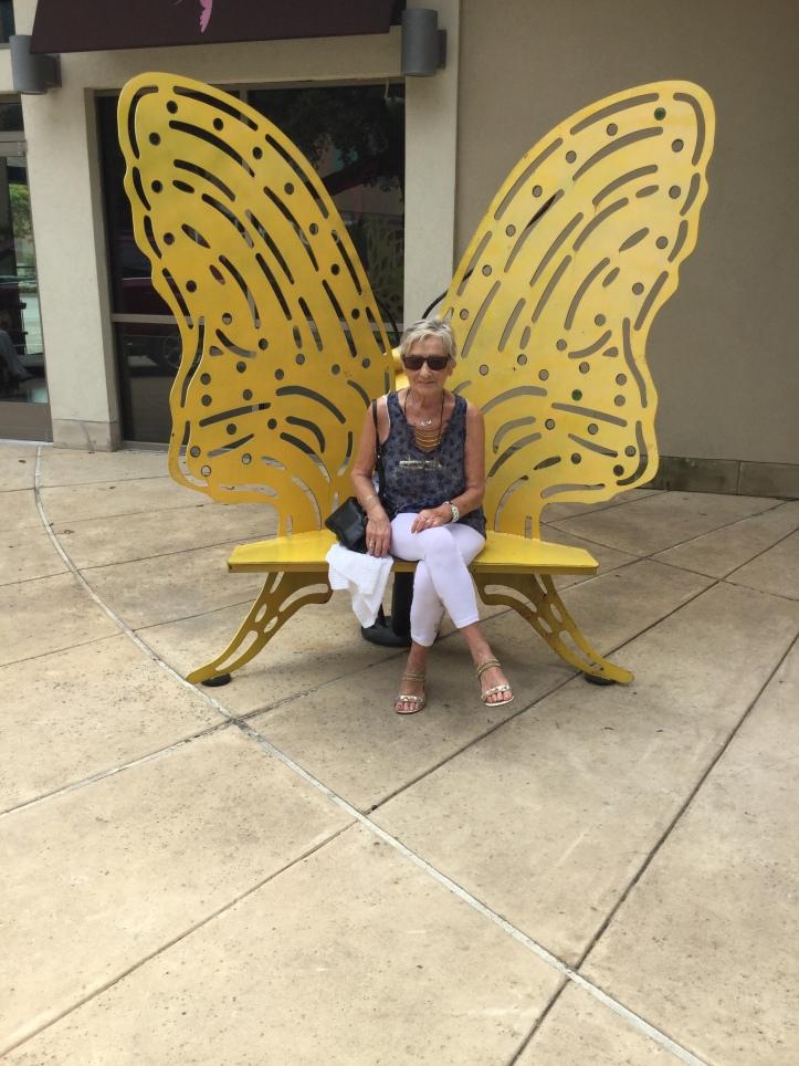 #44 papillon